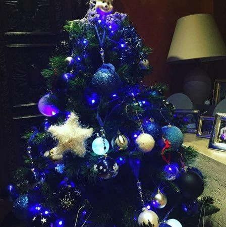 L'albero di Natale dei vip